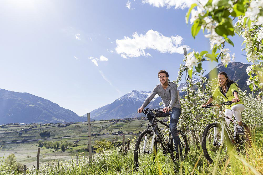 Bike holiday in Vinschgau